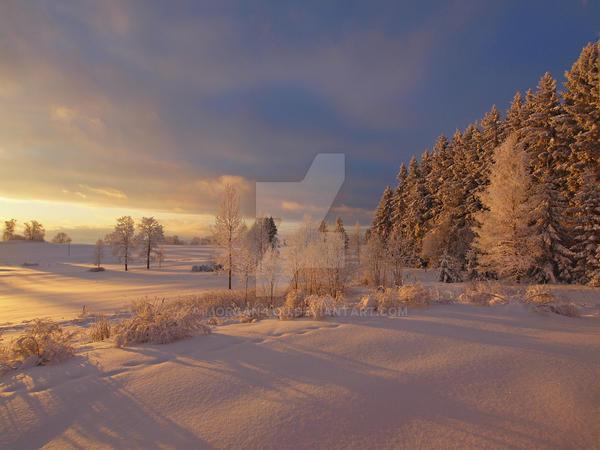 Winter Eden by Morgan-Lou