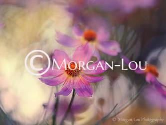 Les valseuses by Morgan-Lou