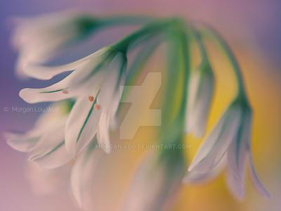 Little spring bells by Morgan-Lou