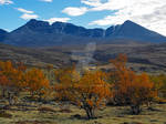 From Doralen in Rondane Mountain Range