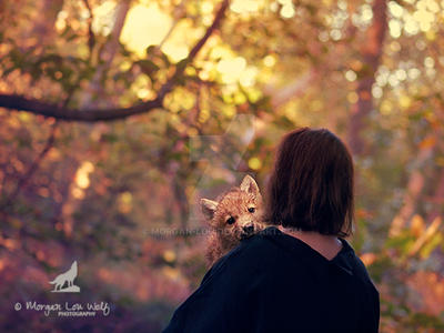 Mon petit loup by Morgan-Lou