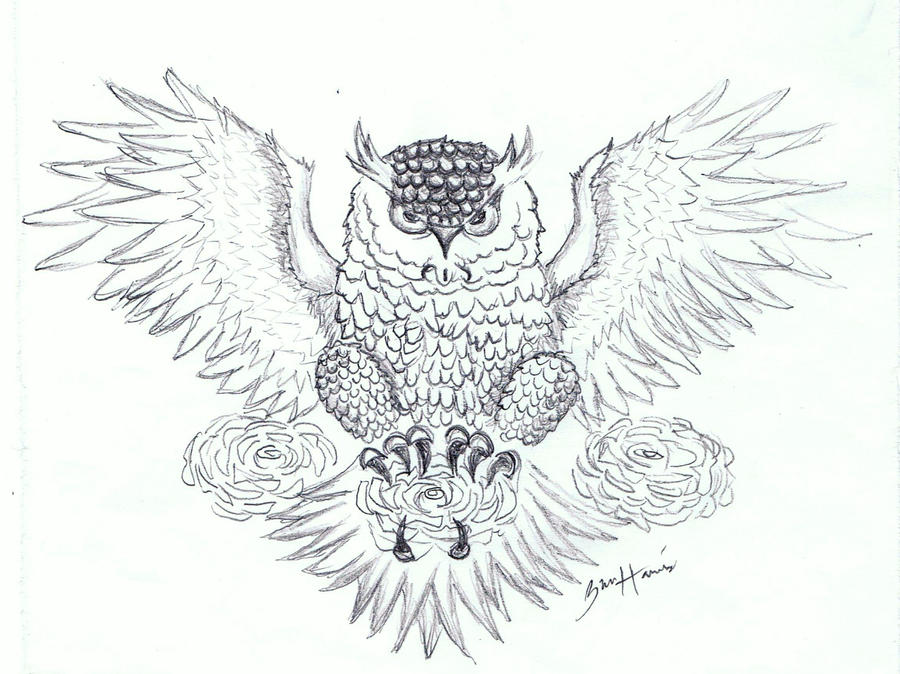 Owl Tattoo Sketches Owl Drawing