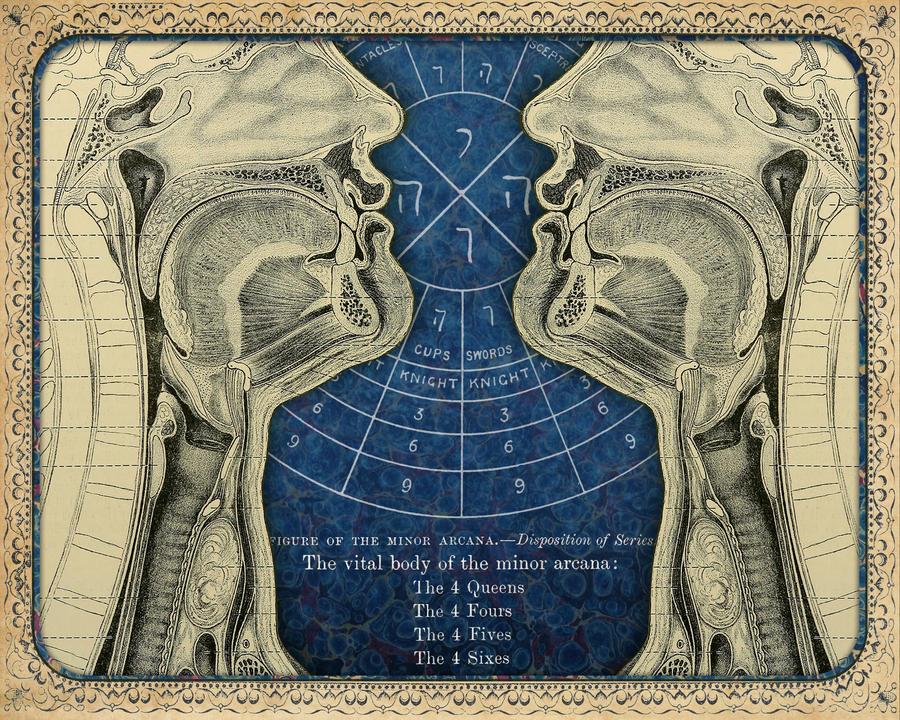 The Vital Body by DivineIguana