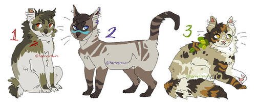 cat designs (OPEN -- READ RULES)