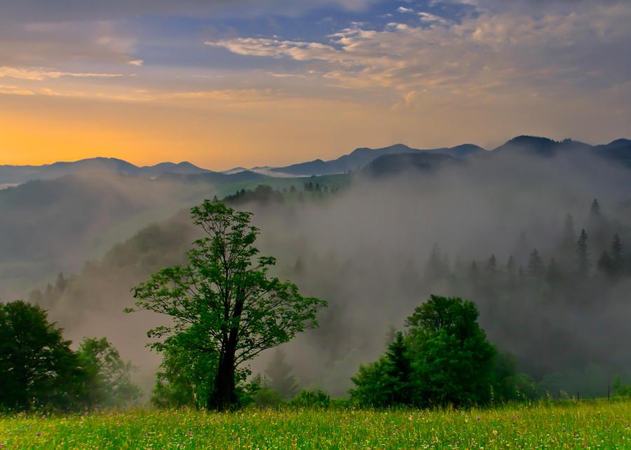 Summer Mist by lica20