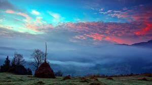 Sunrise of the fog