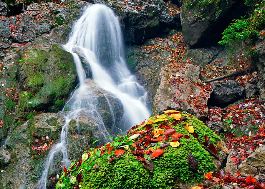 Colors in the cascade by lica20