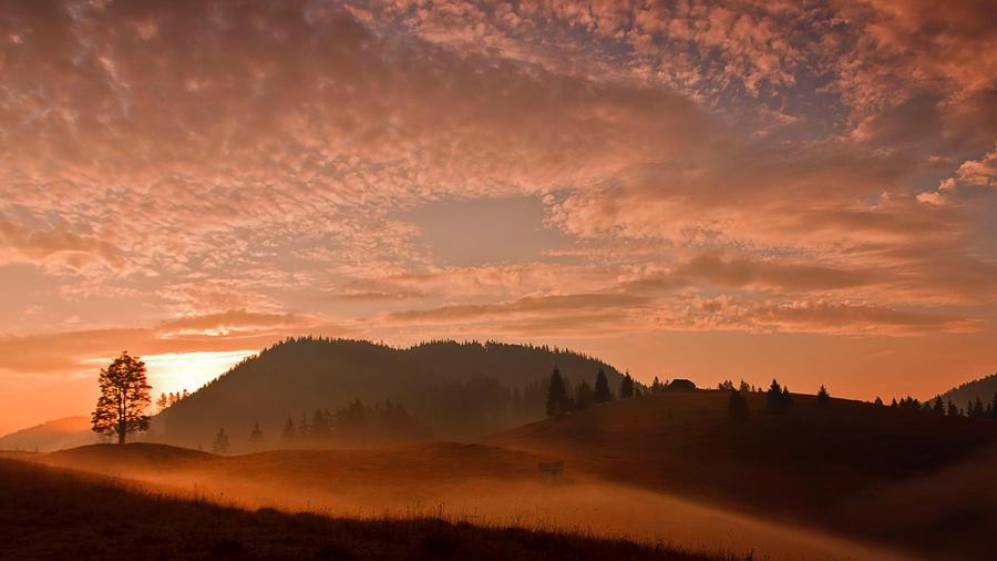 Love Bukovina by lica20