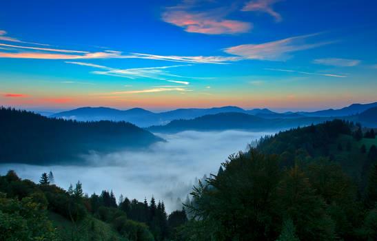 Colors of sunrise.