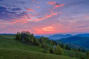 Spring in Bukovina. by lica20