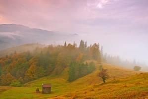Autumn in Bukovina, by lica20