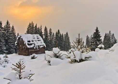 Winter Story.