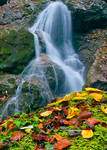 Autumn at waterfall