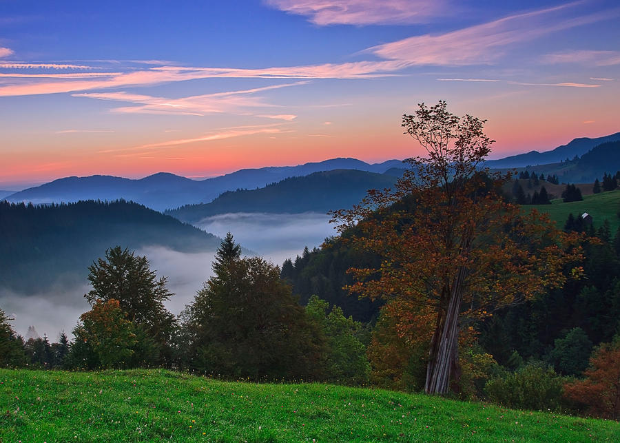 Autumn landscape by lica20