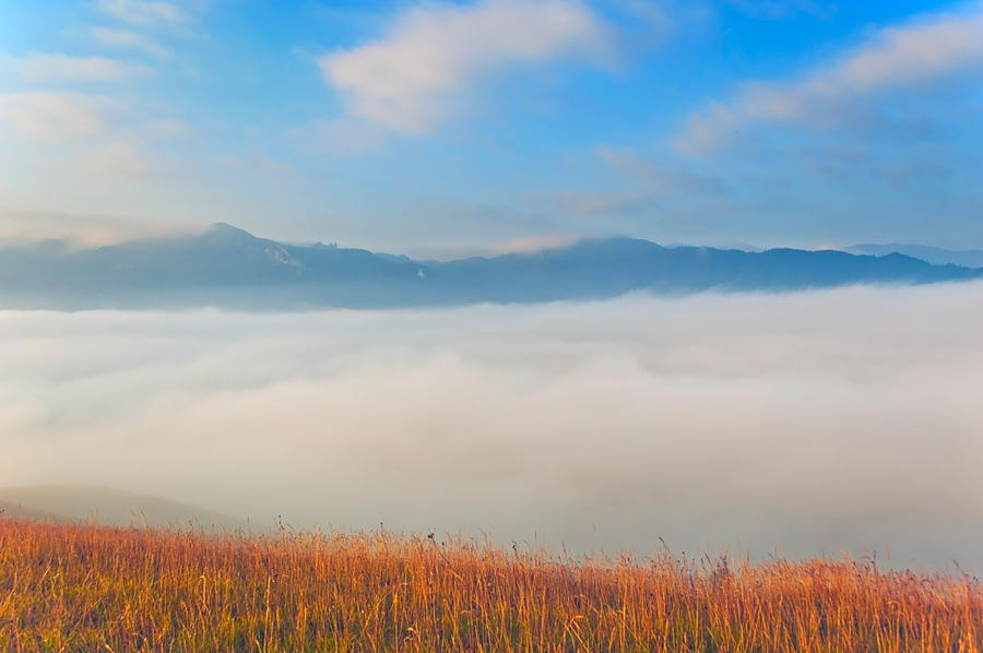 Fog on the valley by lica20
