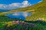 Mountains Rodnei National Park