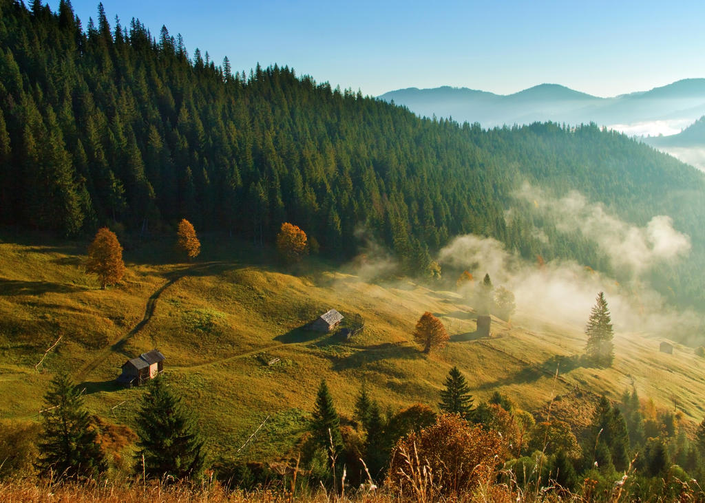 Morning autumn by lica20