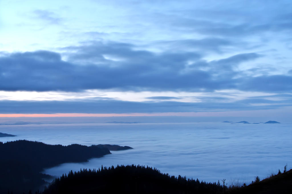 Sea Fog by lica20