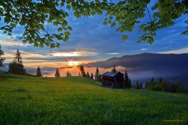 Sweet Bukovina