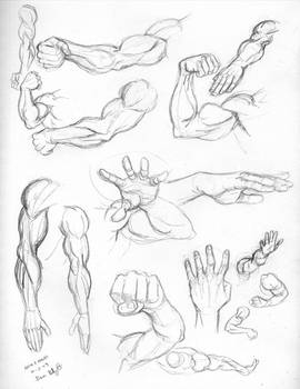Fri 4: Arms and hands
