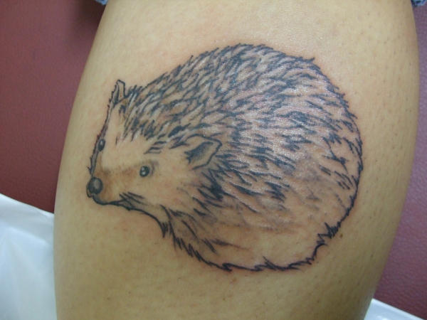 Hedgehog tattoo by ltatt2 on DeviantArt