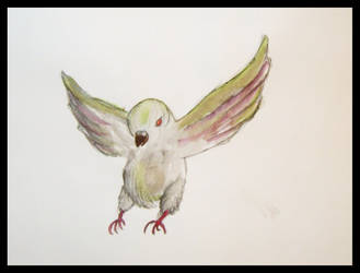Pigeon by aimee-spoons-possoms