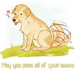 Motivation Dog