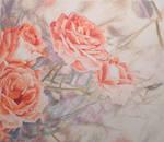 The dear roses