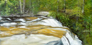 Swallow Falls Series #3 The Top of Muddy Cr. Falls by angelahedderick