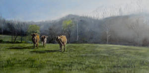 Coming in for Breakfast   (SOLD)