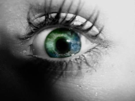 sarahs eye