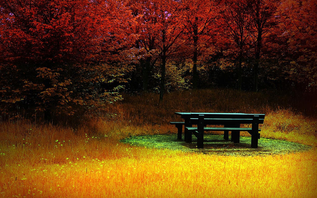 Beautiful Nature Backgrounds Wallpapers By Indies Record Guru