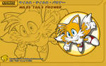 Sonic Channel '10: Tails
