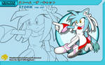 Sonic Channel '10: Storm