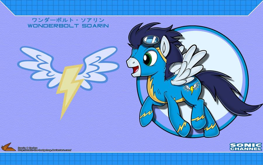 Sonic Channel '12: Soarin by Fuzon-S