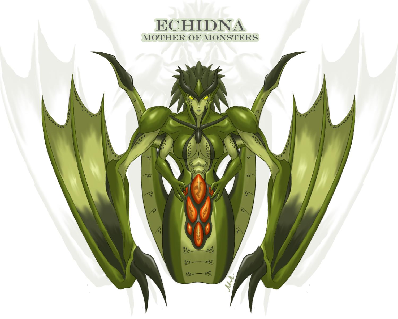 Thread: Echidna...
