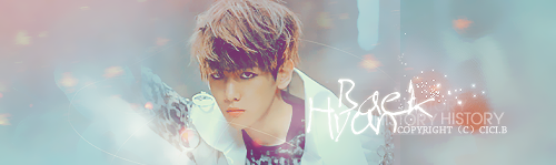 EXO BANNER by taeMinlee