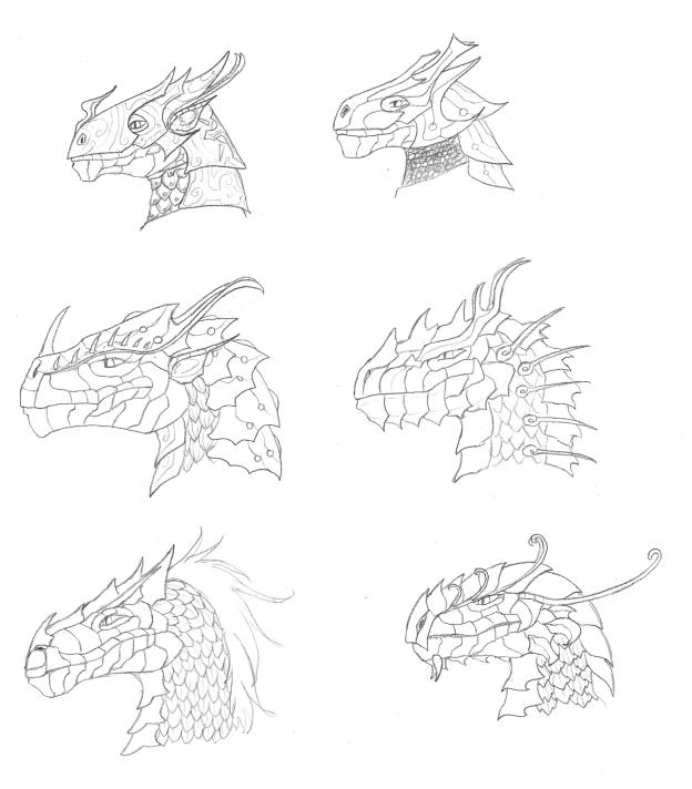 Dragon Sketches by shadowfire-x