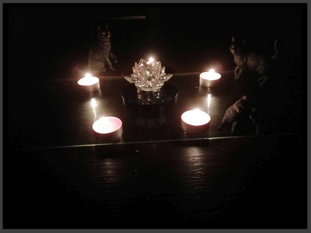 Crystal Lotus, Cats 'n' Candles.
