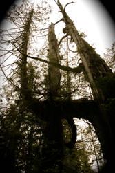 Sleeping giants skywise by Acid8000
