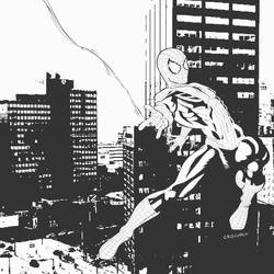 spiderman commission