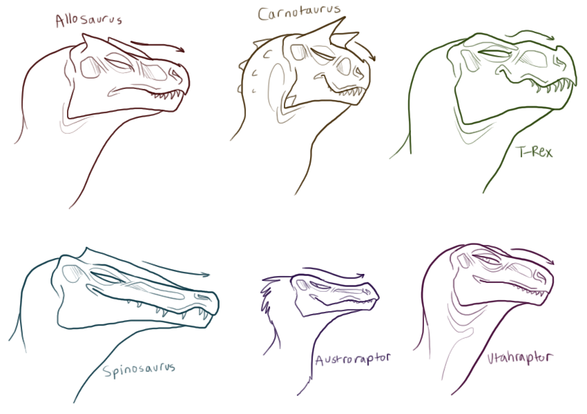 carnivore head sketches by trunswicked on deviantart