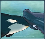 Orca and Pilot Whale Love