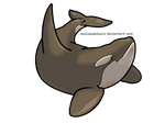 Cappuccino/Antartctic Orca Biology: A Guide