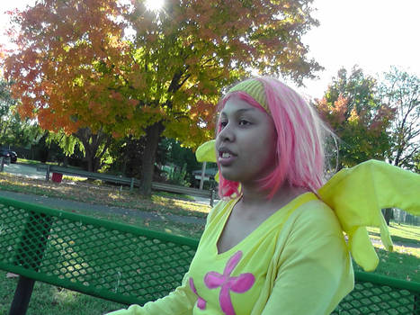 Fluttershy on a Bench