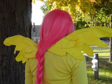 Fluttershy Back