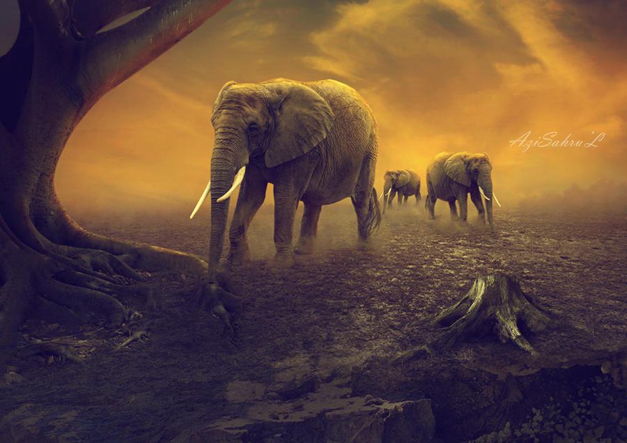 Gajah by azisahrul1