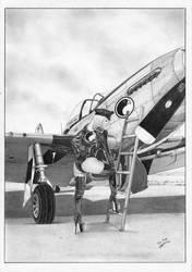 LADY BLACKHAWK aircraft PIN-UP by TimGrayson