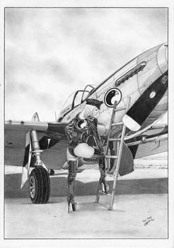LADY BLACKHAWK aircraft PIN-UP