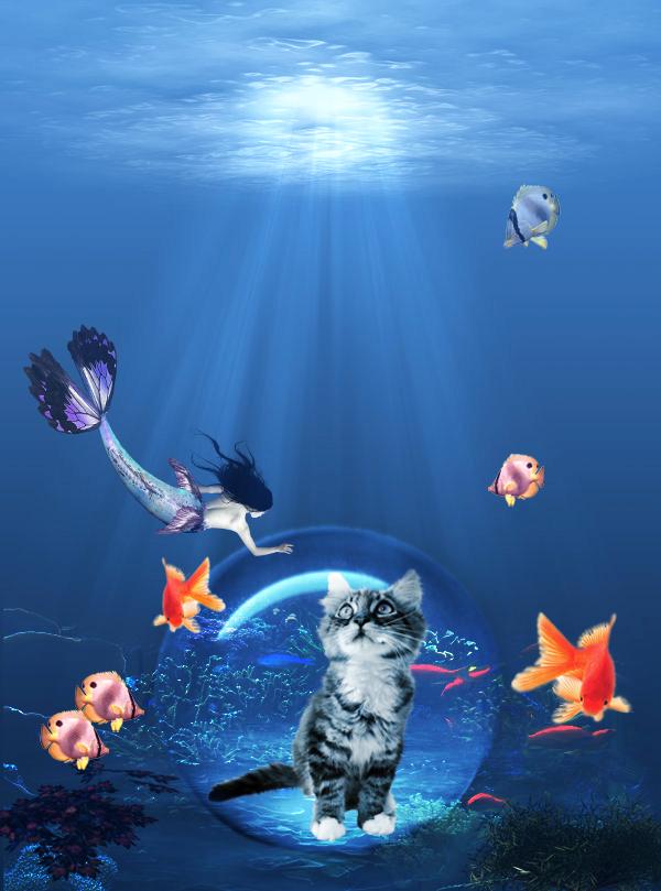 Histoire en images Underwater_cat_by_SeROoOn1